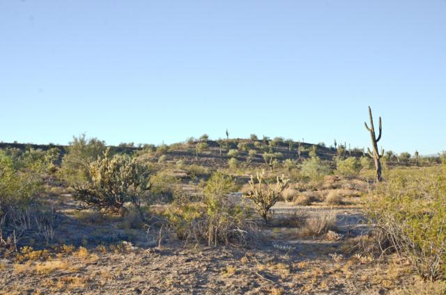 0 W River Road, Wittmann, AZ 85361 (MLS #5821061) :: Openshaw Real Estate Group in partnership with The Jesse Herfel Real Estate Group