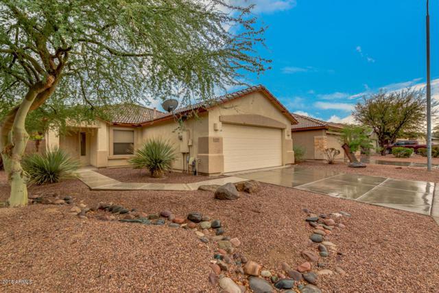 12363 W Woodland Avenue, Avondale, AZ 85323 (MLS #5821245) :: Kelly Cook Real Estate Group