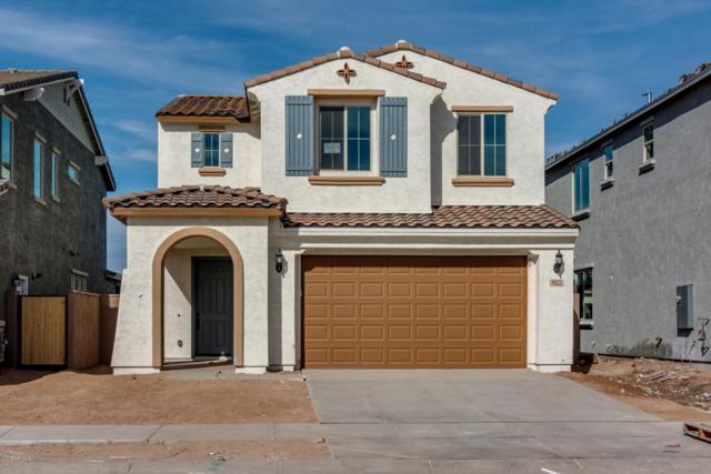 9522 E Thornbush Avenue, Mesa, AZ 85212 (MLS #5821346) :: Gilbert Arizona Realty
