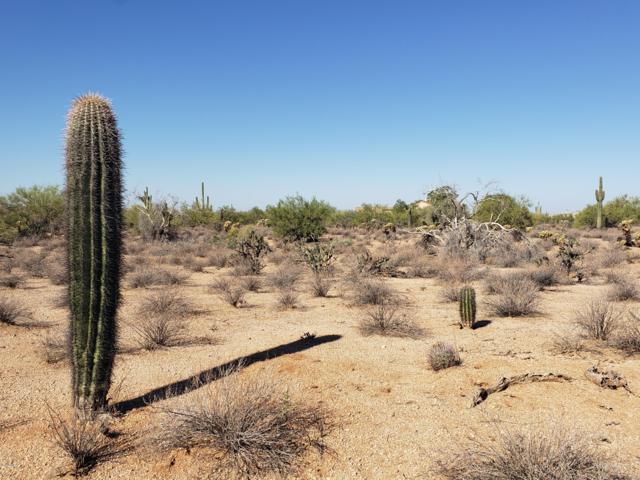 XXXX E Montgomery Road, Scottsdale, AZ 85266 (MLS #5821396) :: The Pete Dijkstra Team