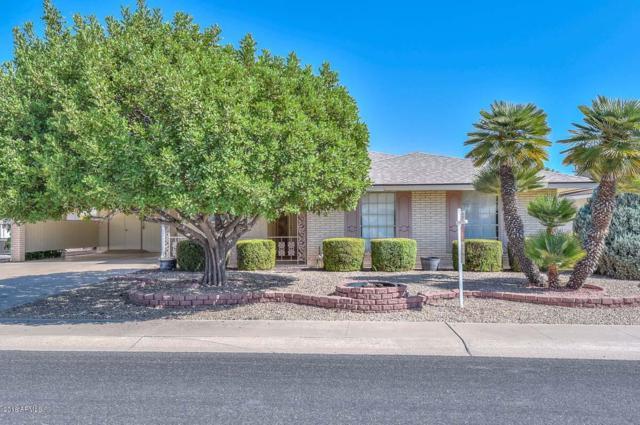 10933 W Saratoga Circle, Sun City, AZ 85351 (MLS #5821690) :: Conway Real Estate