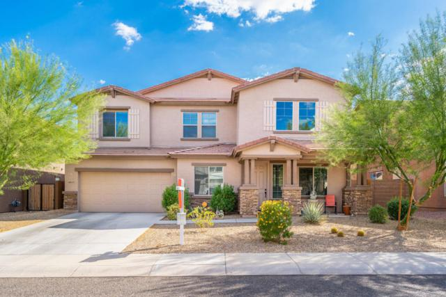 18637 W Turquoise Avenue, Waddell, AZ 85355 (MLS #5821862) :: The AZ Performance Realty Team