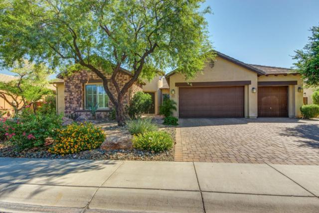 12055 W Miner Trail, Peoria, AZ 85383 (MLS #5822024) :: The W Group