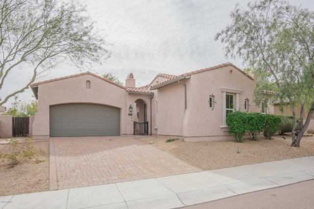 26075 N 85TH Drive, Peoria, AZ 85383 (MLS #5822111) :: The Everest Team at My Home Group