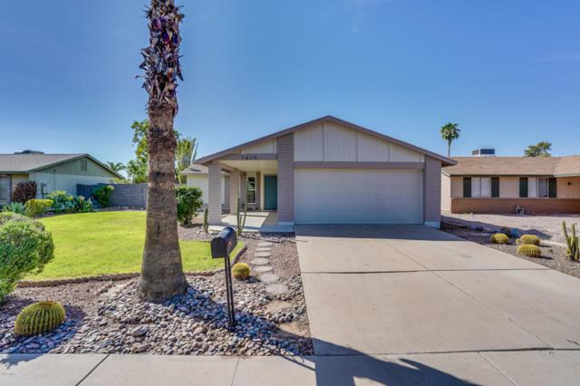1419 W Colt Road, Chandler, AZ 85224 (MLS #5822130) :: Lux Home Group at  Keller Williams Realty Phoenix