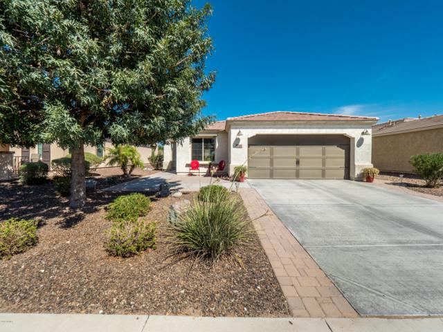 728 E Vesper Trail, San Tan Valley, AZ 85140 (MLS #5822315) :: The Jesse Herfel Real Estate Group