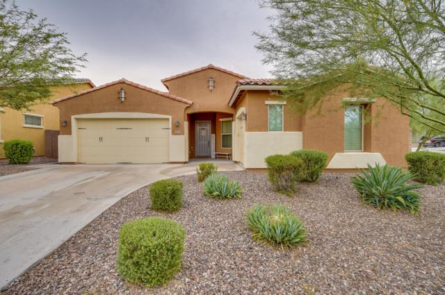 31692 N 131ST Avenue, Peoria, AZ 85383 (MLS #5822554) :: Team Wilson Real Estate