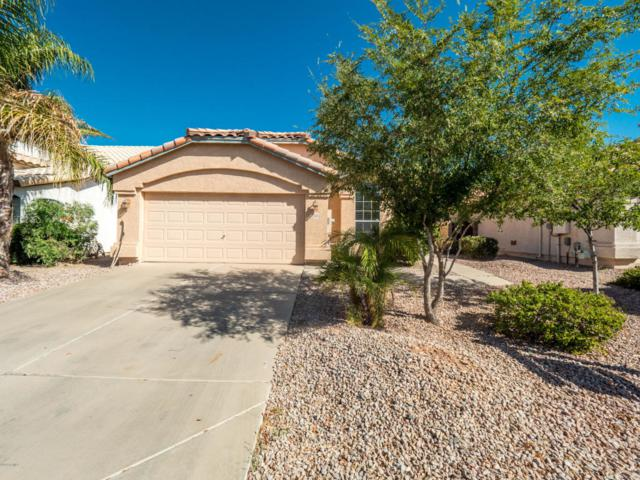1424 E Century Avenue, Gilbert, AZ 85296 (MLS #5822935) :: Kelly Cook Real Estate Group