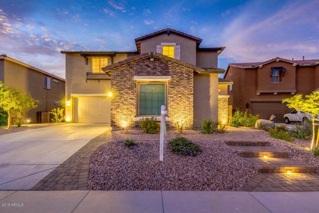13764 W Jesse Red Drive, Peoria, AZ 85383 (MLS #5822996) :: The Laughton Team