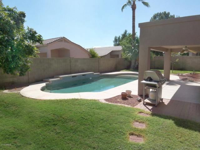 6629 W Quail Avenue, Glendale, AZ 85308 (MLS #5823047) :: The Bill and Cindy Flowers Team