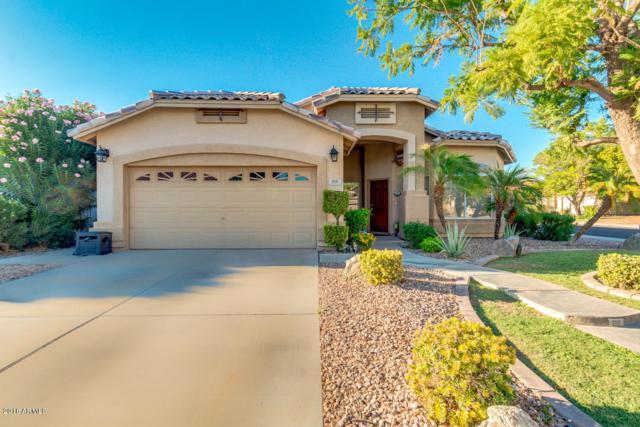 906 W Pinon Avenue, Gilbert, AZ 85233 (MLS #5823076) :: Team Wilson Real Estate