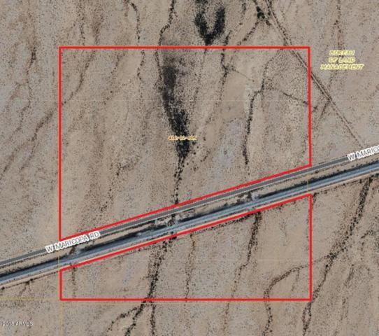 12700 W Maricopa Road, Mobile, AZ 85139 (MLS #5823222) :: Klaus Team Real Estate Solutions