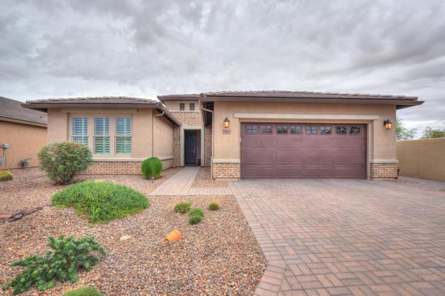 5110 N Sonora Court, Eloy, AZ 85131 (MLS #5823289) :: Yost Realty Group at RE/MAX Casa Grande