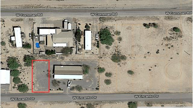 3070 W Encanto Drive, Eloy, AZ 85131 (MLS #5823408) :: Kortright Group - West USA Realty