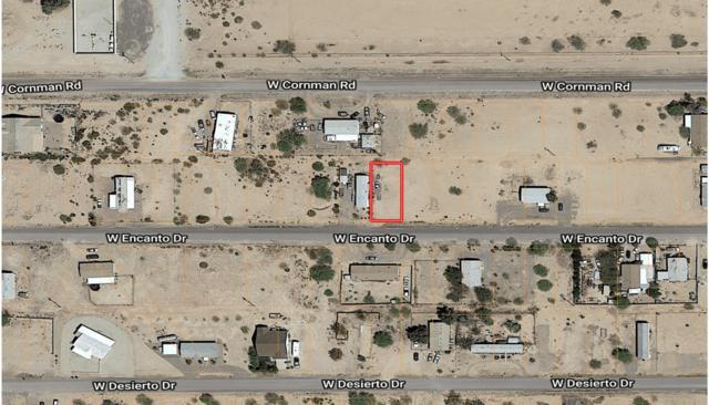 3360 W Encanto Drive, Eloy, AZ 85131 (MLS #5823421) :: Kortright Group - West USA Realty