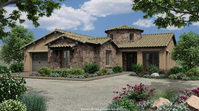 4691 N 206TH Avenue, Buckeye, AZ 85396 (MLS #5823516) :: Team Wilson Real Estate