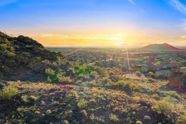 28201 N 89TH Drive, Peoria, AZ 85383 (MLS #5823542) :: Lifestyle Partners Team