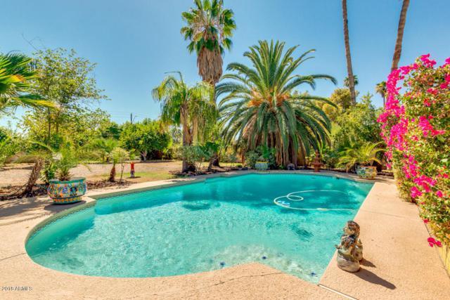 5241 E Ludlow Drive, Scottsdale, AZ 85254 (MLS #5823881) :: RE/MAX Excalibur