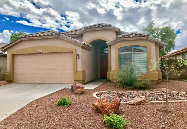 11417 W Locust Lane, Avondale, AZ 85323 (MLS #5823987) :: The Garcia Group