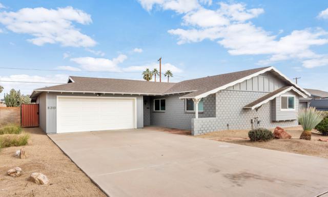 8310 E Devonshire Avenue, Scottsdale, AZ 85251 (MLS #5824254) :: Conway Real Estate