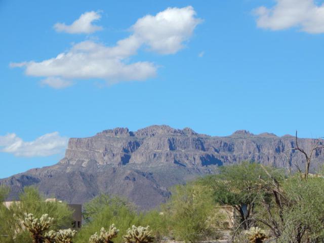 5156 S Desierto Luna Way, Gold Canyon, AZ 85118 (MLS #5824339) :: The Kenny Klaus Team