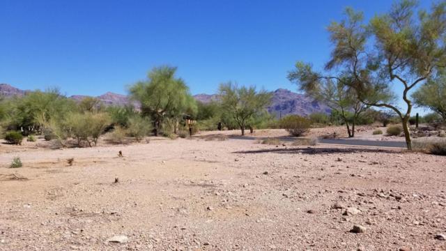 3828 S Gambel Quail Way, Gold Canyon, AZ 85118 (MLS #5824570) :: Yost Realty Group at RE/MAX Casa Grande