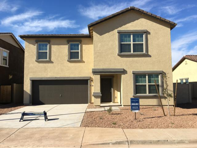 37266 W Cannataro Lane, Maricopa, AZ 85138 (MLS #5824843) :: The Laughton Team