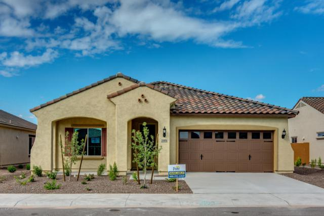 25964 W Piute Avenue, Buckeye, AZ 85396 (MLS #5824905) :: The Garcia Group @ My Home Group