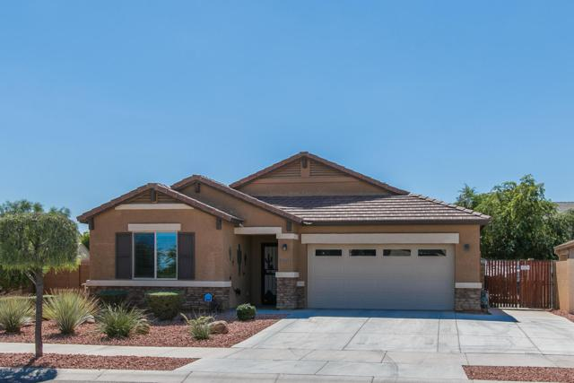 17515 W Eugene Terrace, Surprise, AZ 85388 (MLS #5825083) :: Team Wilson Real Estate