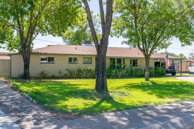 733 W Flynn Lane, Phoenix, AZ 85013 (MLS #5825240) :: The Pete Dijkstra Team