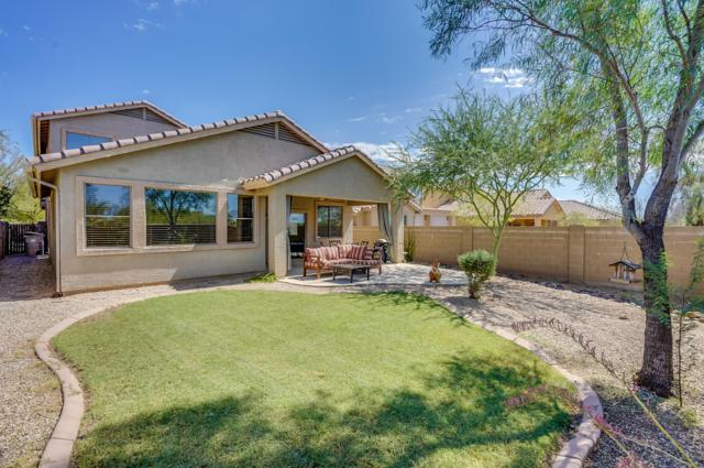 39522 N Messner Way, Anthem, AZ 85086 (MLS #5825312) :: Arizona 1 Real Estate Team