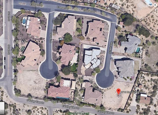 8715 S 24TH Way, Phoenix, AZ 85042 (MLS #5825420) :: Arizona Home Group