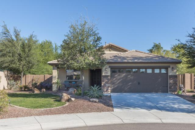 18546 W Lupine Avenue, Goodyear, AZ 85338 (MLS #5825793) :: Kortright Group - West USA Realty