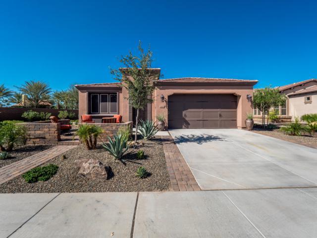 36818 N Stoneware Drive, San Tan Valley, AZ 85140 (MLS #5825927) :: The Garcia Group