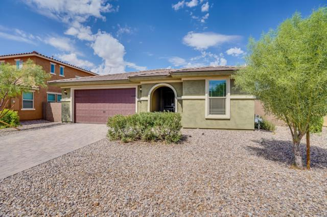 2672 E Daniel Drive, Gilbert, AZ 85298 (MLS #5825942) :: Arizona 1 Real Estate Team