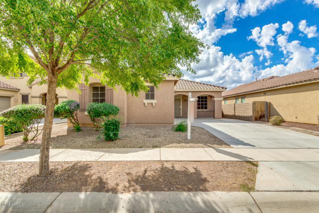 3023 E Patrick Street, Gilbert, AZ 85295 (MLS #5826344) :: Lux Home Group at  Keller Williams Realty Phoenix