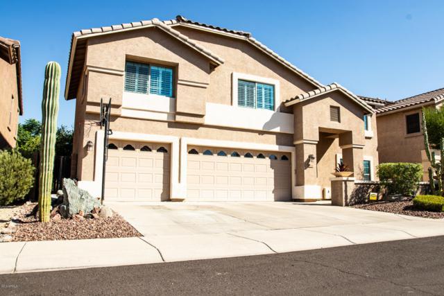 2036 E Avenida Del Sol, Phoenix, AZ 85024 (MLS #5826376) :: The Jesse Herfel Real Estate Group