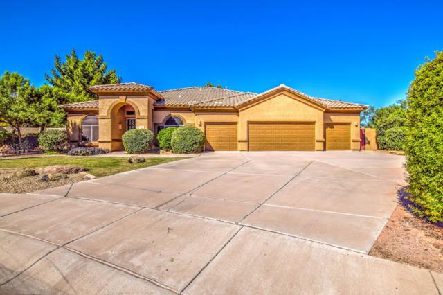 1522 E Appaloosa Court, Gilbert, AZ 85296 (MLS #5826645) :: Kepple Real Estate Group