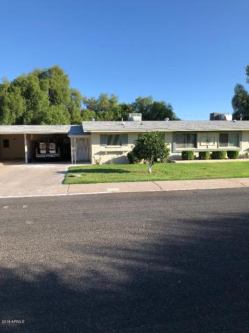 10009 W Lakeview Circle N, Sun City, AZ 85351 (MLS #5826710) :: The Everest Team at My Home Group