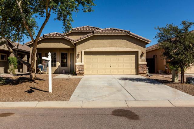36029 N Mirandesa Drive, San Tan Valley, AZ 85143 (MLS #5826836) :: Yost Realty Group at RE/MAX Casa Grande