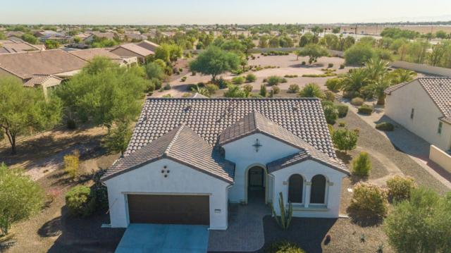1775 N 164TH Drive, Goodyear, AZ 85395 (MLS #5826838) :: CC & Co. Real Estate Team