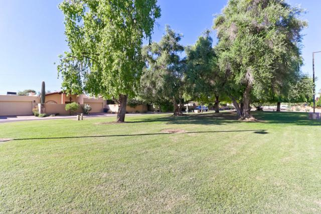 741 E Tuckey Lane, Phoenix, AZ 85014 (MLS #5826877) :: The Garcia Group @ My Home Group