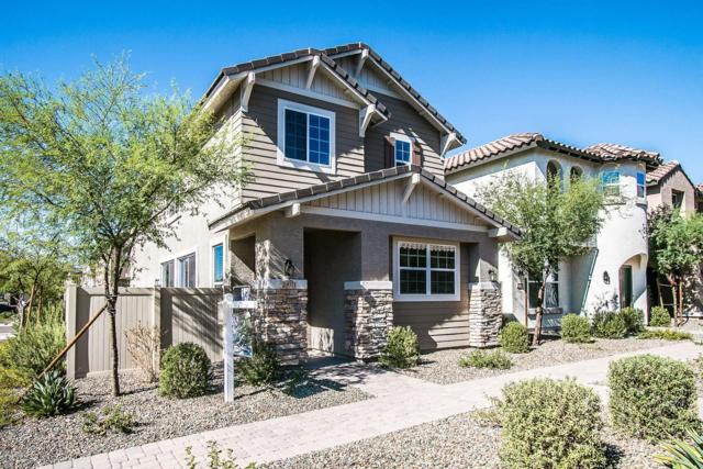 29011 N 125TH Lane, Peoria, AZ 85383 (MLS #5826912) :: The Results Group