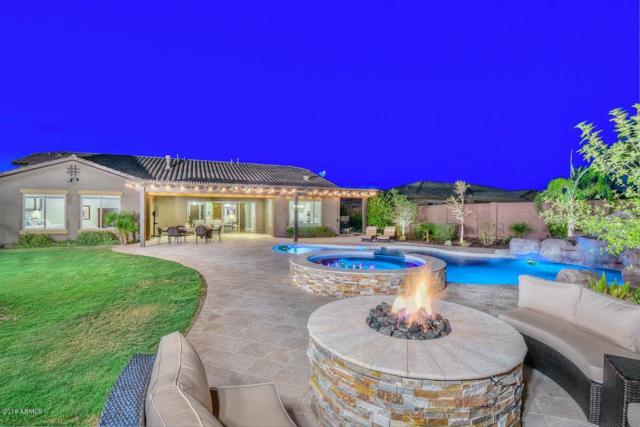 12935 W Creosote Drive, Peoria, AZ 85383 (MLS #5826949) :: CC & Co. Real Estate Team