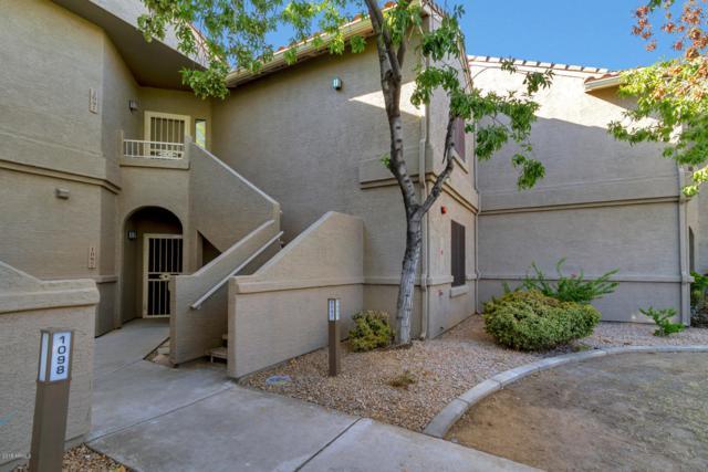 15380 N 100TH Street #2097, Scottsdale, AZ 85260 (MLS #5827051) :: The Laughton Team