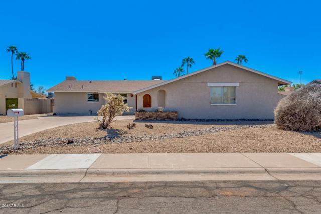 4441 W Las Palmaritas Drive, Glendale, AZ 85302 (MLS #5827058) :: CC & Co. Real Estate Team