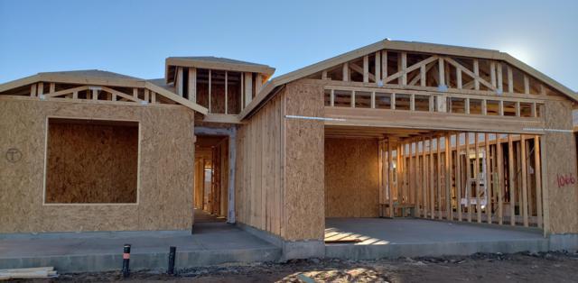 42207 W Lucera Lane, Maricopa, AZ 85138 (MLS #5827122) :: Revelation Real Estate
