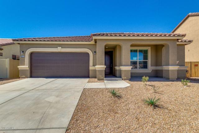 42259 W Lucera Lane, Maricopa, AZ 85138 (MLS #5827131) :: The Daniel Montez Real Estate Group