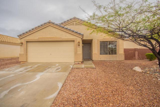 23868 W Lasso Lane, Buckeye, AZ 85326 (MLS #5827375) :: Desert Home Premier