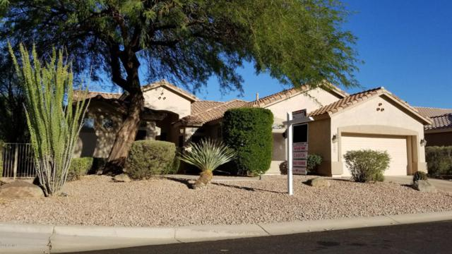 5235 S Red Yucca Lane, Gold Canyon, AZ 85118 (MLS #5827650) :: The Everest Team at My Home Group